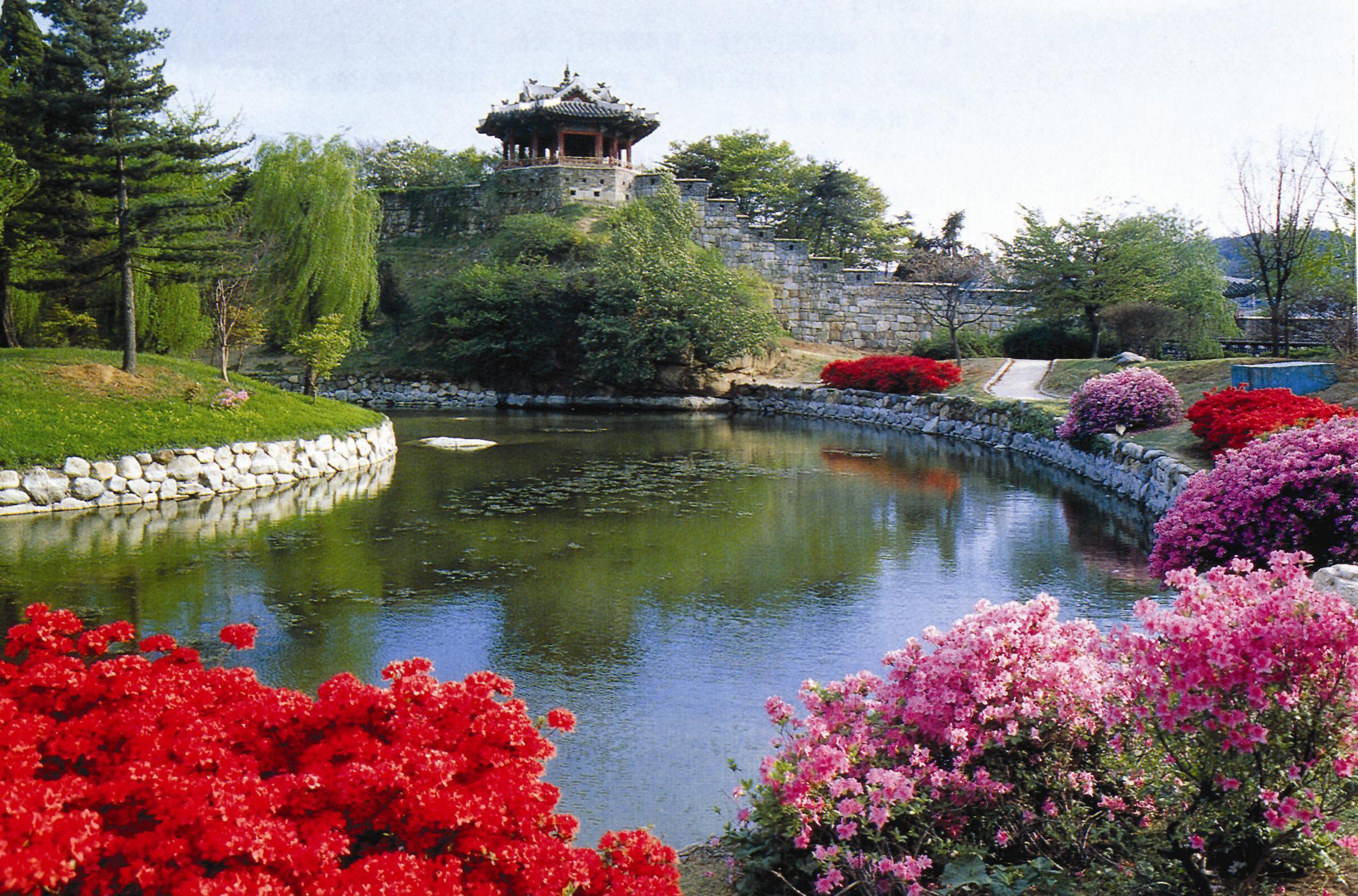 水原華城の画像 p1_39