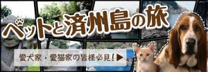 ペットと行く世界遺産の島_済州島の旅
